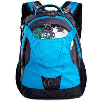 Рюкзак Swisswin SW8570 black/blue